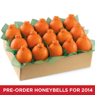 HoneyBells Large Sampler