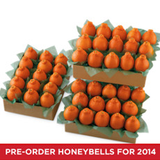 HoneyBells Large Family Size
