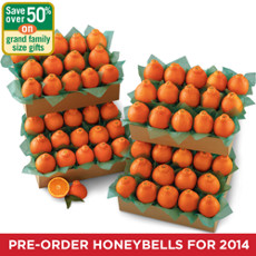 HoneyBells Grand Family Size