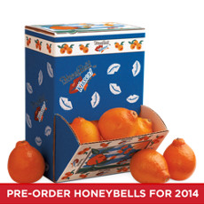 HoneyBell Kisses® Counter Pack