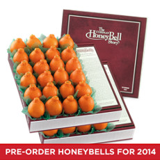 Two HoneyBell Care Packages - 36-48 Count
