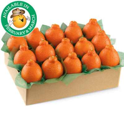 Western HoneyBells Large Sampler